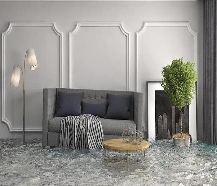 flooded living room floor with floating gray coach and house plant