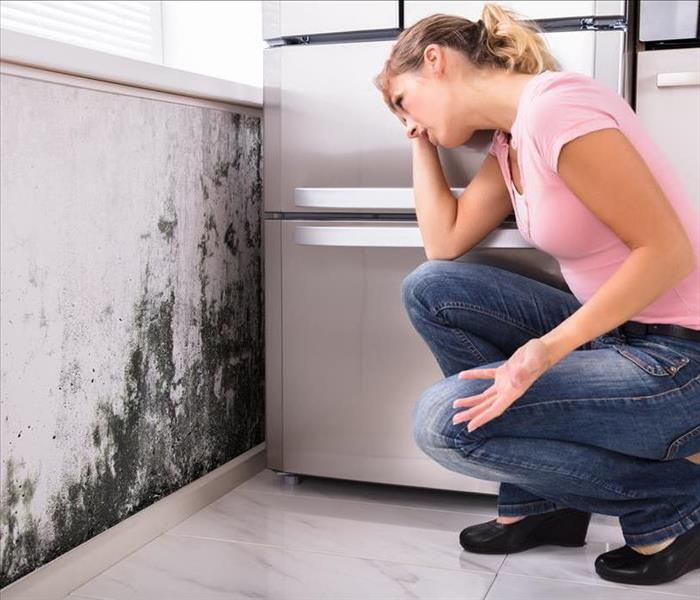 female kneeling and looking at mold stains on kitchen wall