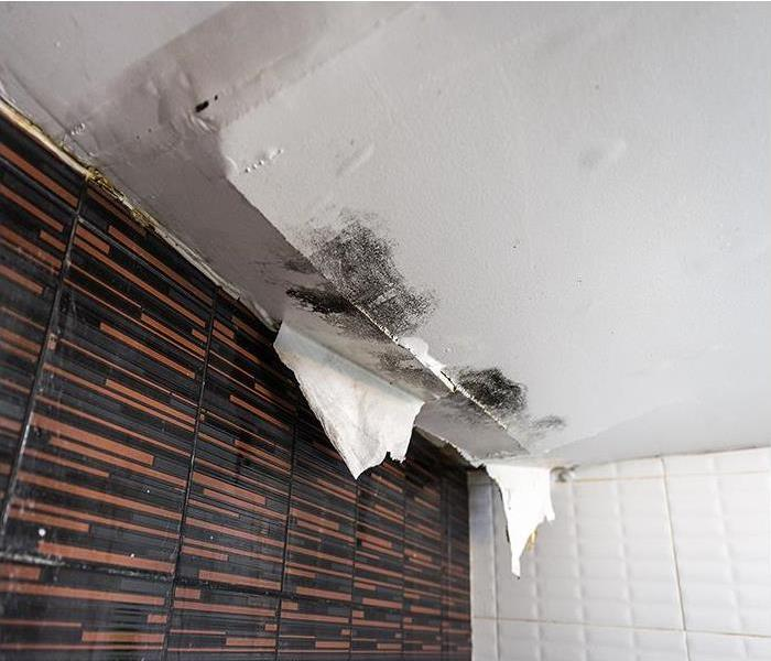 Water Damage Benefits Of Immediate Water Damage Restoration In Jacksonville