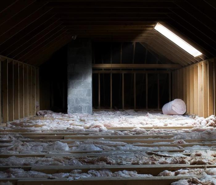 Mold Remediation Attic Mold Damage Remediation in Jacksonville