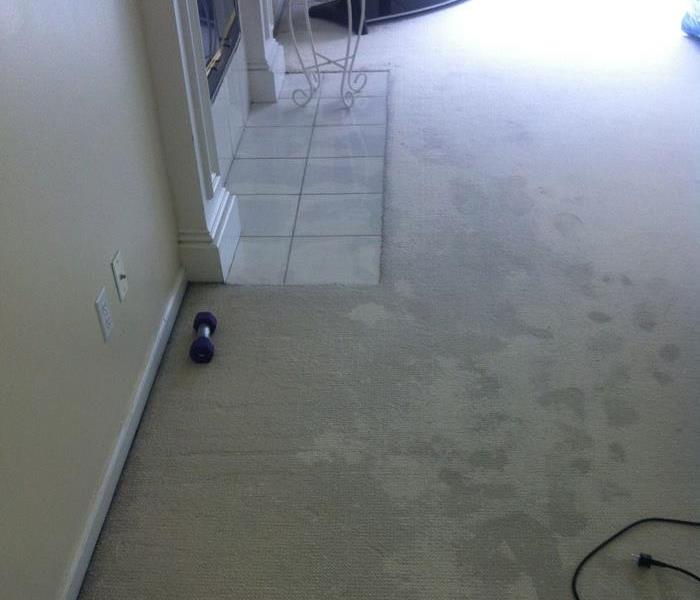 Water Damage Preventing Water Damage in Your Sprink Park Home